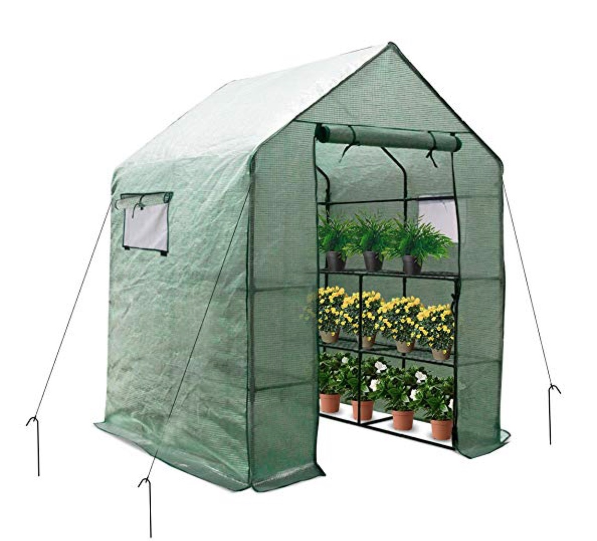 Large Portable Walk-in Plant Greenhouse with PE Cover