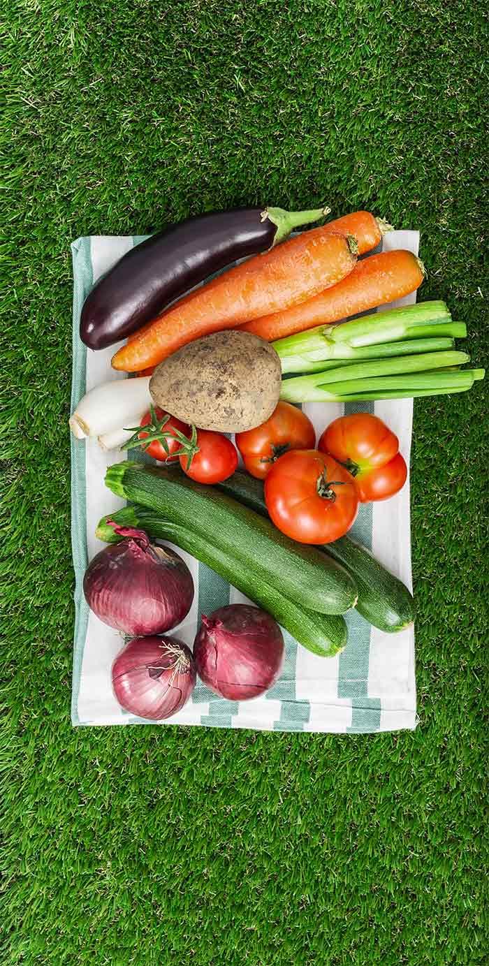 urban farming news